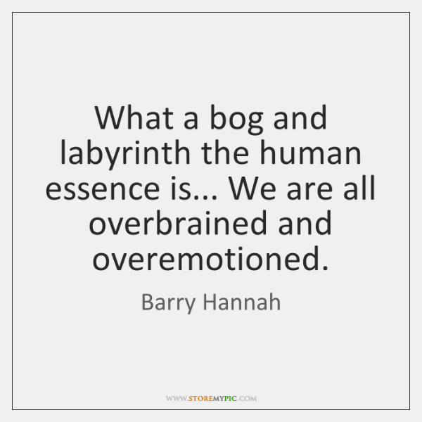 What a bog and labyrinth the human essence is... We are all ...