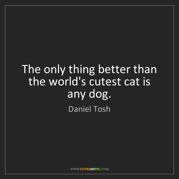 Daniel Tosh: The only thing better than the world's cutest cat is...
