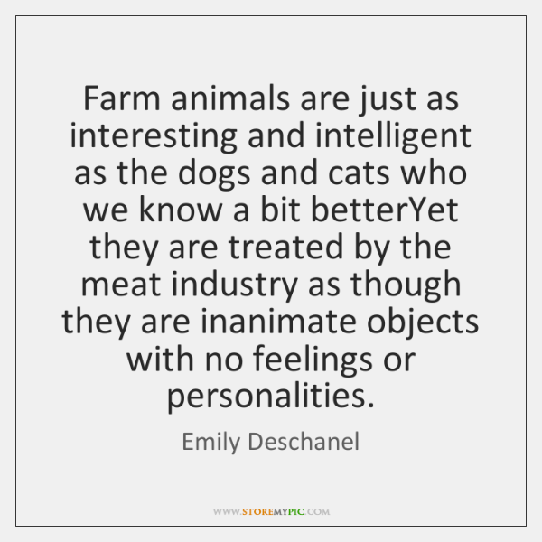 Farm animals are just as interesting and intelligent as the dogs and ...