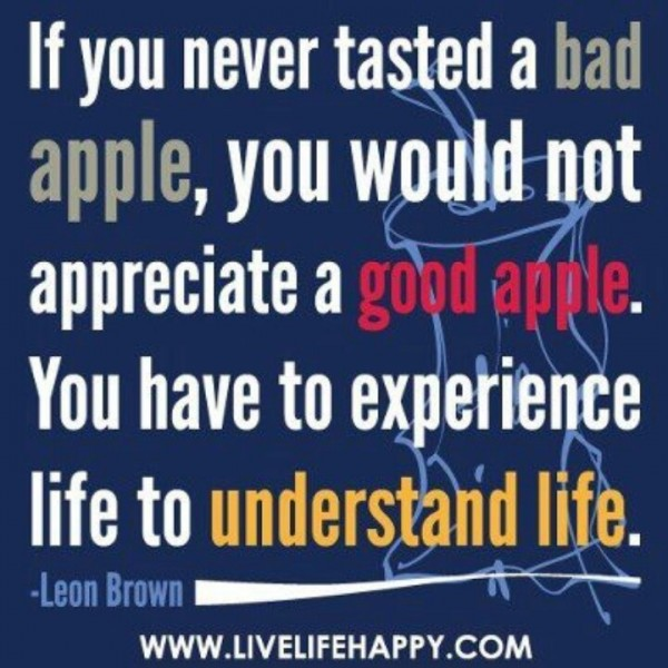 If you never tasted a bad apple you would not appreciate a good apple you have to e