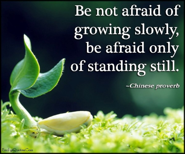 Be not afraid of growing slowly be afraid only of standing still chinese proverb