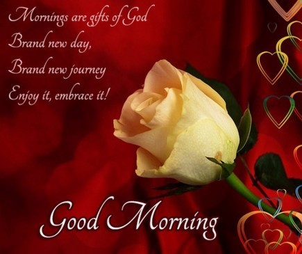 Mornings are gifts of good brand new day brand new journey enjoy it embrace it