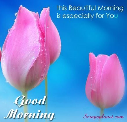 This beautiful morning is especially for you good morning 001