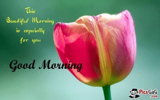 This beautiful morning is especially for you good morning 002