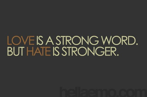Love Is A Strong Word But Hate Is Stronger Storemypic