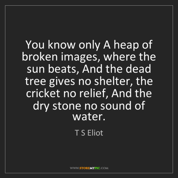 T S Eliot: You know only A heap of broken images, where the sun...