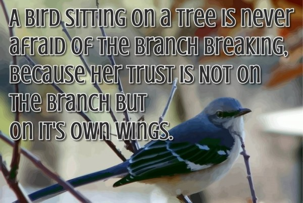A bird sitting on a tree is never afraid of the branch breaking because her trus