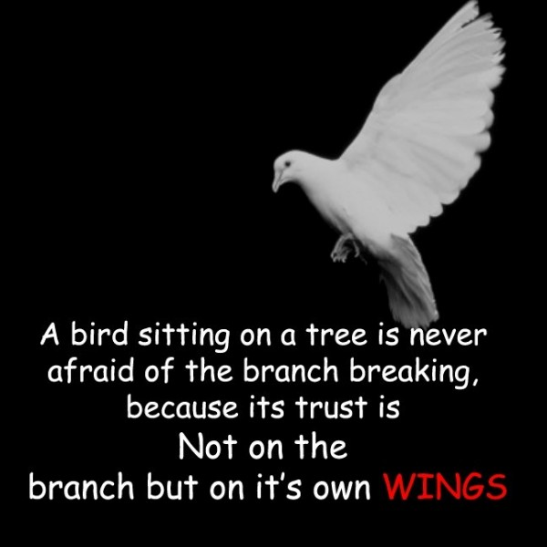 A bird sitting on a tree is never on a tree is never afraid of the branch breaking