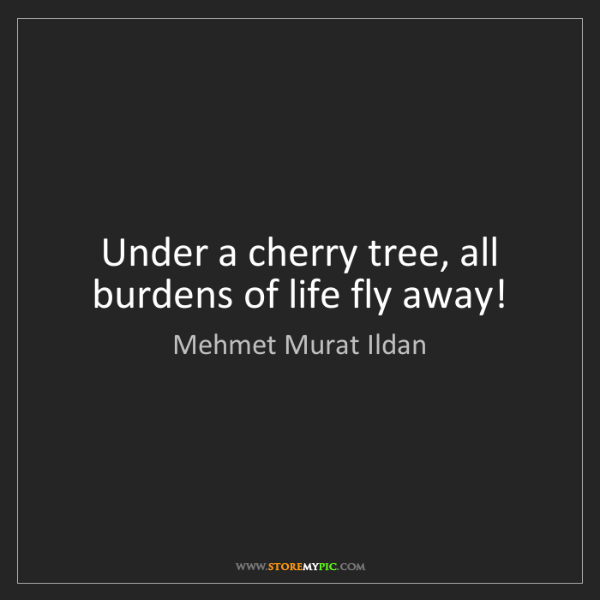 Mehmet Murat Ildan: Under a cherry tree, all burdens of life fly away!