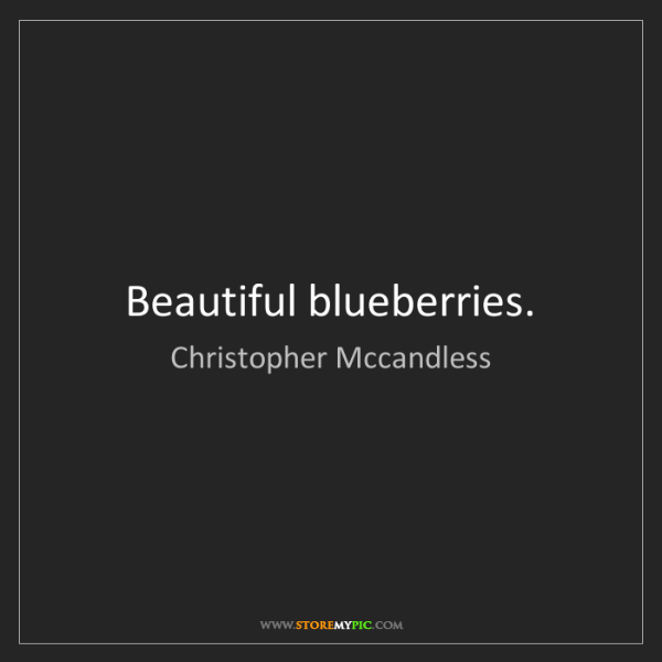 Christopher Mccandless: Beautiful blueberries.