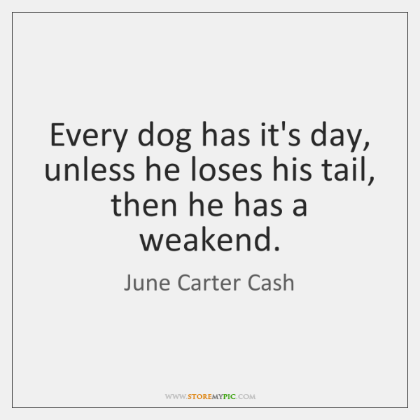 Every Dog Has Its Day Unless He Loses His Tail Then He