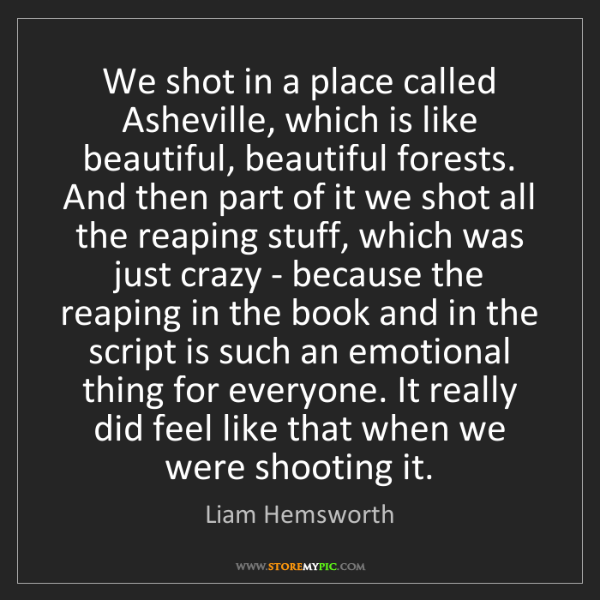 Liam Hemsworth: We shot in a place called Asheville, which is like beautiful,...
