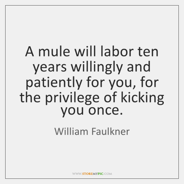 William Faulkner Quotes StoreMyPic Enchanting William Faulkner Quotes