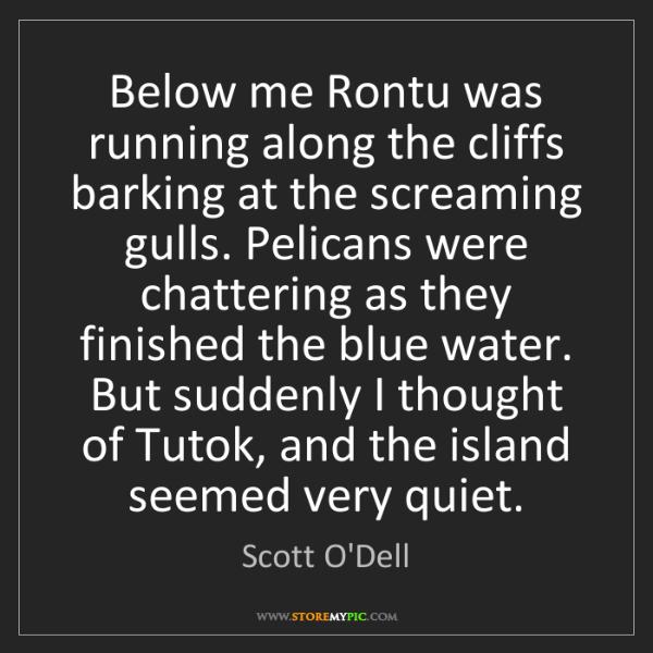 Scott O'Dell: Below me Rontu was running along the cliffs barking at...