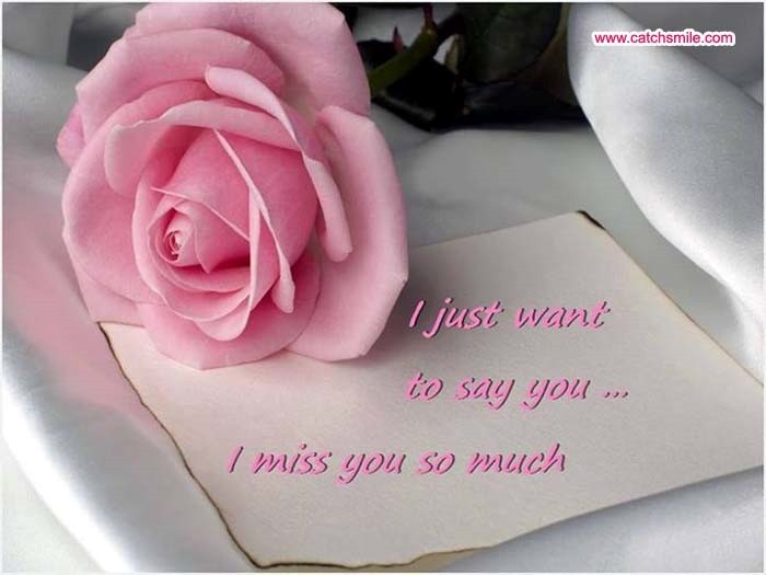 I Just Want To Say You I Miss You So Much Storemypic