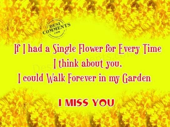 If I Had A Single Flower For Every Time I Think About You I Could