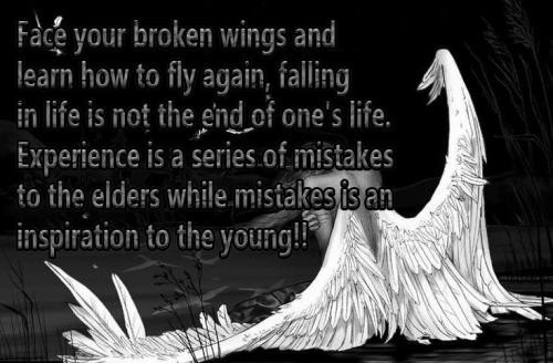 Face your broken wings and learn how to fly again falling in life is not the end of on