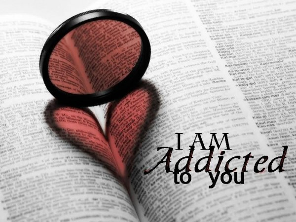 I am addicted to you book