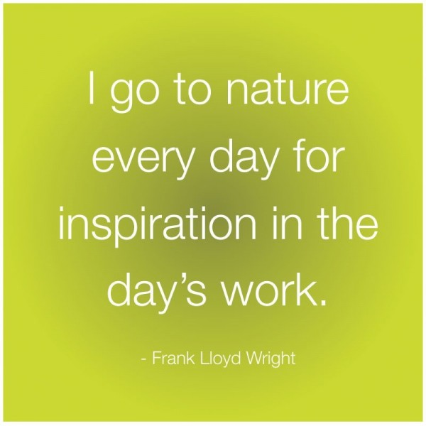 I go to nature every day for inspiration in the days work frank llyod wright