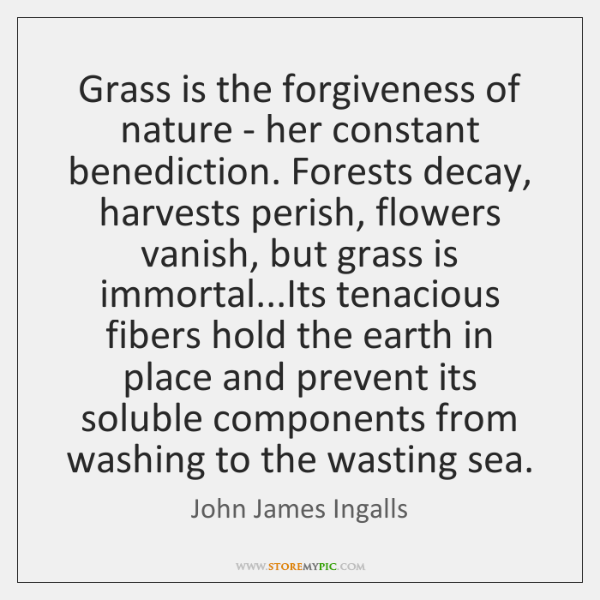 Grass is the forgiveness of nature - her constant benediction. Forests decay, ...