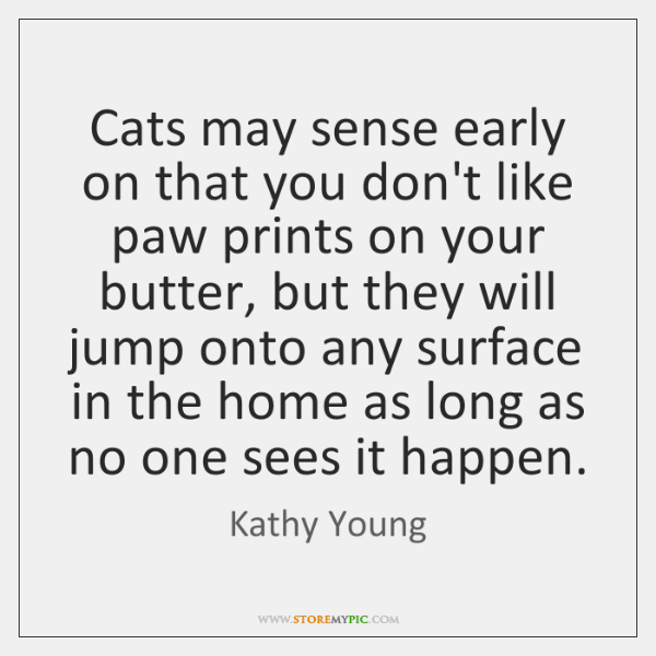 Cats may sense early on that you don't like paw prints on ...