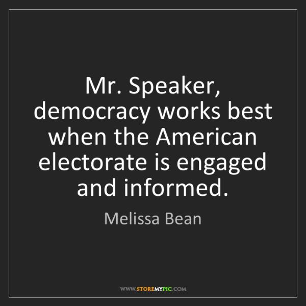 Melissa Bean: Mr. Speaker, democracy works best when the American electorate...