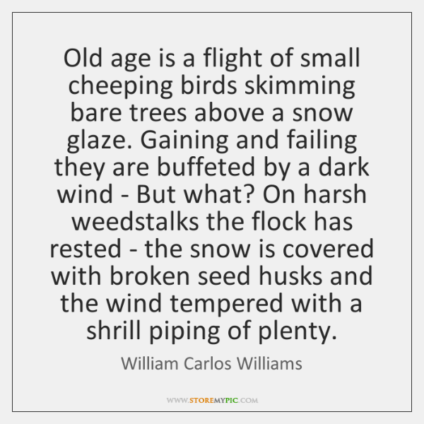 Old age is a flight of small cheeping birds skimming bare trees ...