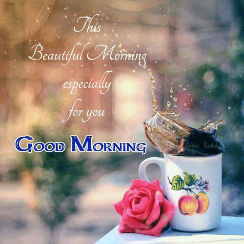 Beautiful morning for her or him