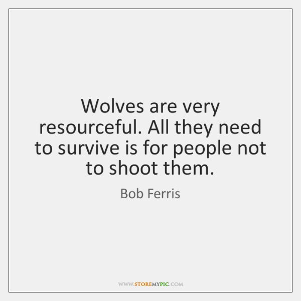 Wolves are very resourceful. All they need to survive is for people ...