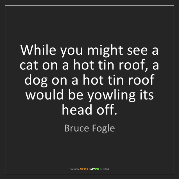 Bruce Fogle: While you might see a cat on a hot tin roof, a dog on...