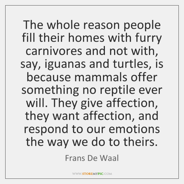 The whole reason people fill their homes with furry carnivores and not ...