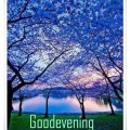 good-evening-beautiful-view-image-1c3ad