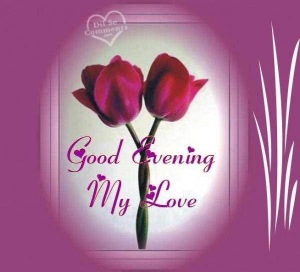Good evening my love rose buds