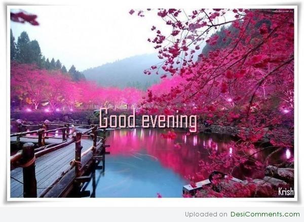 Good evening pink flowers
