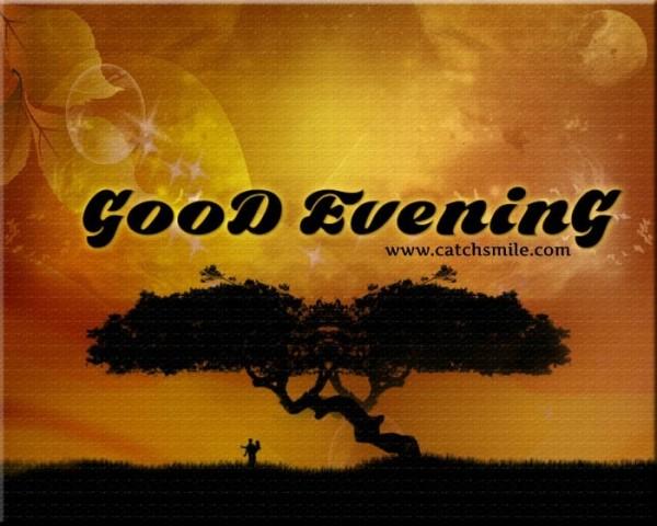 Good evening tree