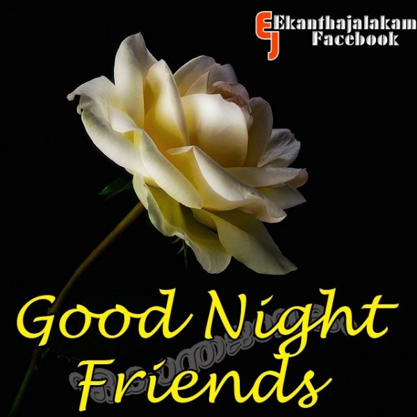 Good night friends flower