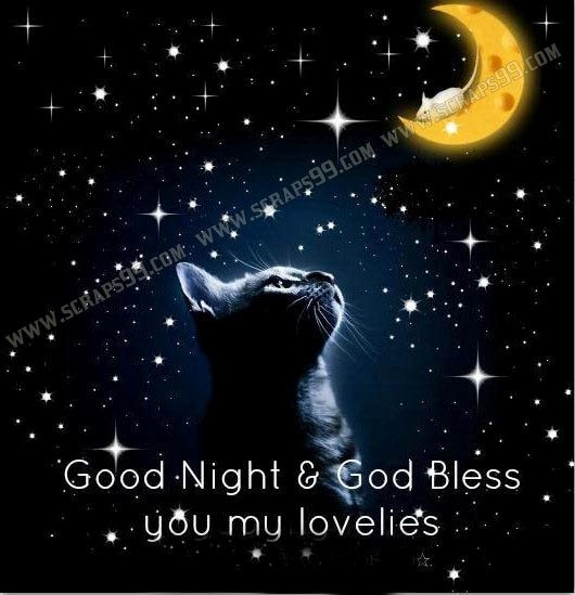 Good night god bless you my lovelies - StoreMyPic