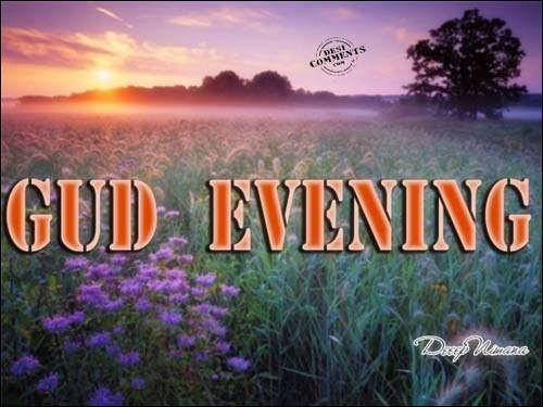 Gud Evening Flowers Storemypic