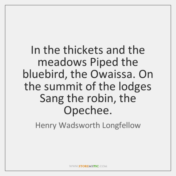 In the thickets and the meadows Piped the bluebird, the Owaissa. On ...