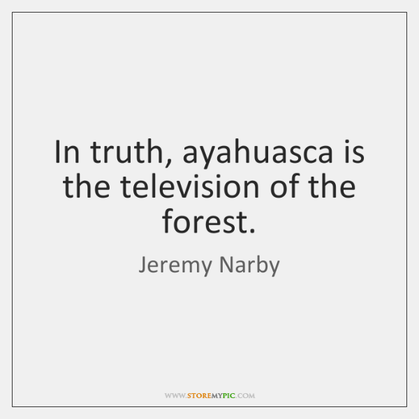 In truth, ayahuasca is the television of the forest.