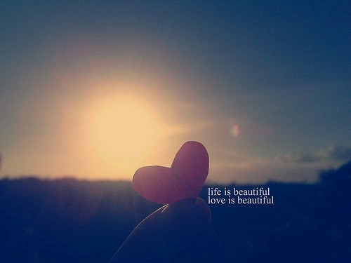 Life is beautiful love is beautiful