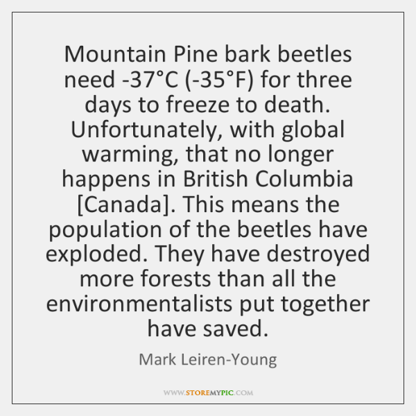 Mountain Pine bark beetles need -37