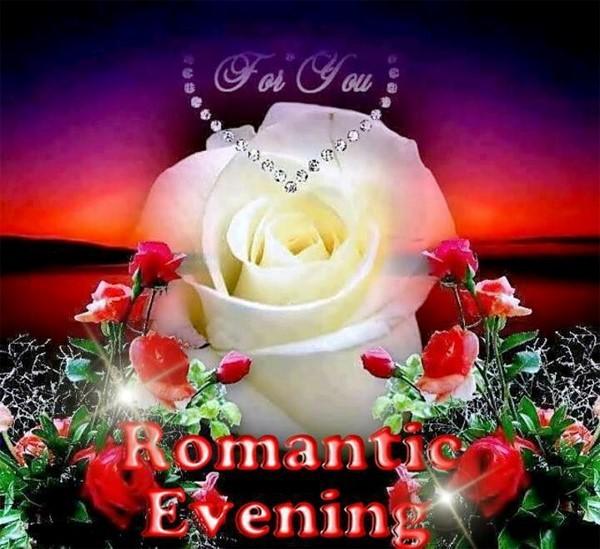 Romantic evening white rose