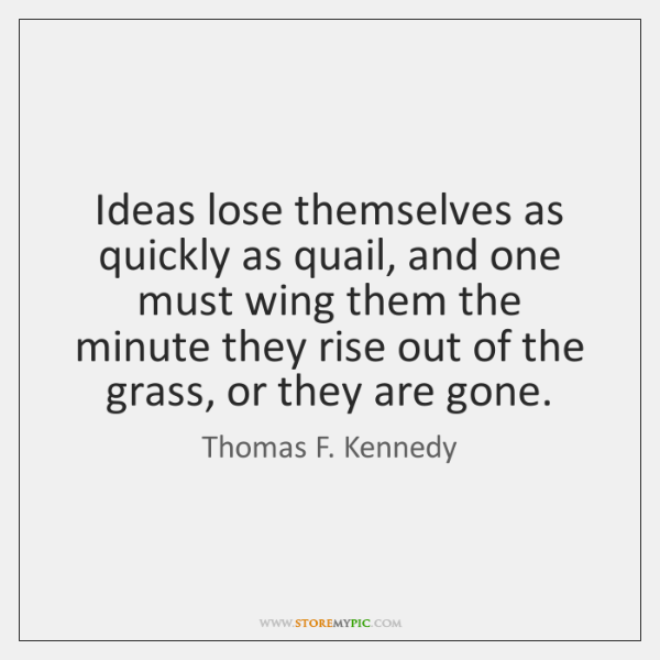 Ideas lose themselves as quickly as quail, and one must wing them ...