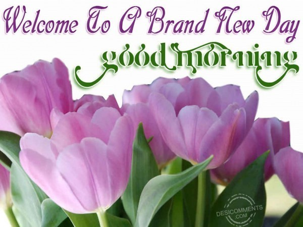 Welcome to a brand new day good morning