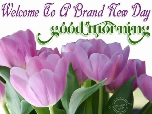 Welcome to a brand new day good morning image
