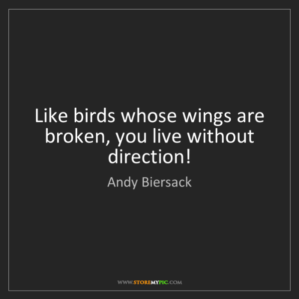 Andy Biersack: Like birds whose wings are broken, you live without direction!