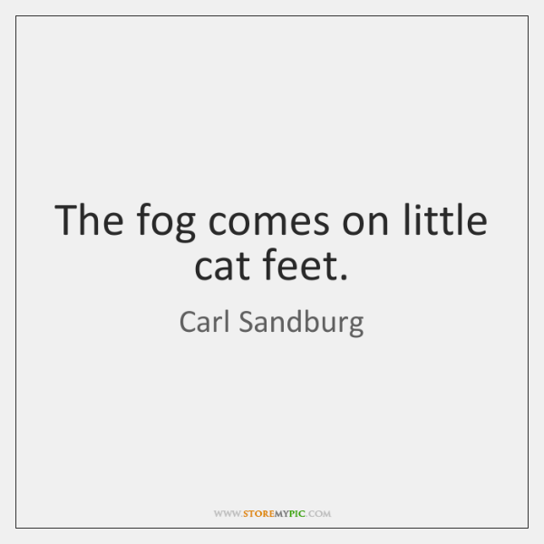 The fog comes on little cat feet.