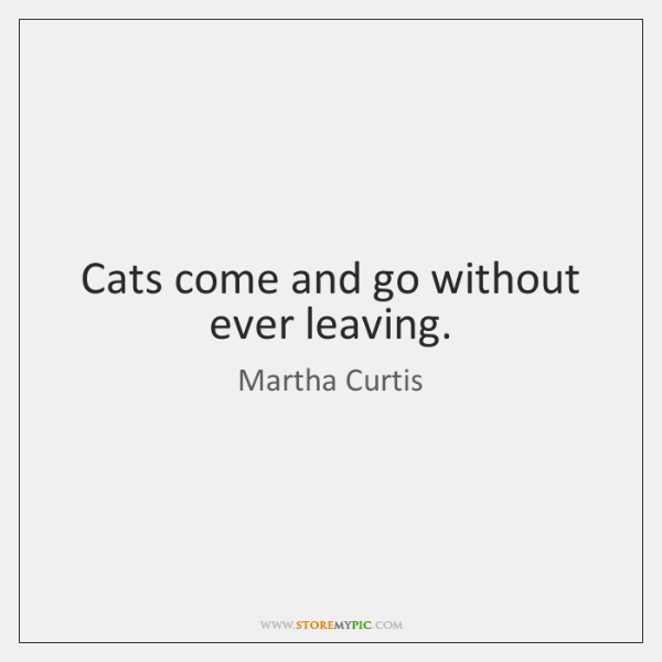Cats come and go without ever leaving.