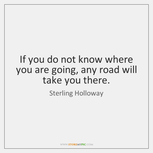 If you do not know where you are going, any road will ...